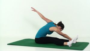 Pilates twister